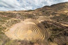 Il sito archeologico a Moray, destinazione di viaggio nella regione di Cusco e la valle sacra, Perù Terrazzi concentrici maestosi Immagine Stock Libera da Diritti