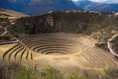 Il sito archeologico a Moray, destinazione di viaggio nella regione di Cusco e la valle sacra, Perù Terrazzi concentrici maestosi Fotografia Stock Libera da Diritti