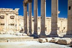 Il sito di Palmira Immagine Stock Libera da Diritti