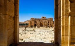 Il sito di Palmira Immagini Stock Libere da Diritti