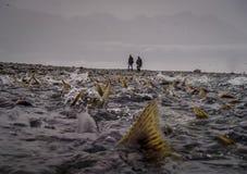 Il sogno del pescatore Fotografie Stock Libere da Diritti