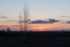 Il sole è scomparso dietro l'orizzonte Fotografia Stock