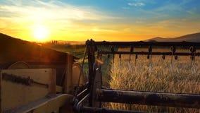 Il sole che stabilisce con la raccolta dell'agricoltore dell'associazione Immagini Stock Libere da Diritti