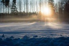 Il sole della molla riscalda il campo nevoso Fotografia Stock