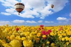 Il sole della molla splende il pallone di volo Immagine Stock Libera da Diritti