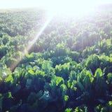 Il sole e la vista verde fotografie stock libere da diritti
