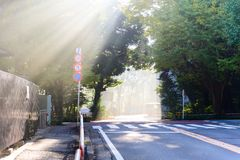 il sole fantastico/Sun di mattina irradia il flusso continuo attraverso Th immagini stock libere da diritti