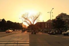 il sole ha messo vicino al parco di Jieshou a 2011 Fotografia Stock