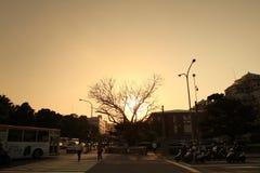 il sole ha messo vicino al parco di Jieshou a 2011 Fotografie Stock Libere da Diritti