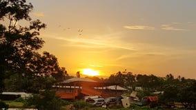 Il sole nel Surinam immagine stock