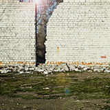 Il sole splende dietro un muro di mattoni Immagine Stock Libera da Diritti