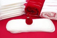 Il sorriso vago lavora all'uncinetto i cuscinetti quotidiani e mestruali degli asciugamani di goccia del sangue, di bagno di Terr Immagine Stock Libera da Diritti