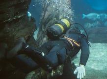 Il subaqueo Immagini Stock Libere da Diritti