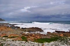 Il Sudafrica, la Provincia del Capo Occidentale, la penisola del Capo Fotografie Stock Libere da Diritti