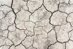 Il suolo della crepa sul periodo di siccità, riscaldamento globale/fango secco incrinato/asciuga il fondo incrinato della terra/t Fotografie Stock Libere da Diritti