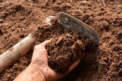Il suolo della tenuta dell'uomo nelle mani per la piantatura con la zappa Fotografie Stock