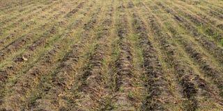 Il suolo scanala le terre dell'azienda agricola Fotografie Stock