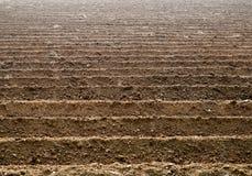 Il suolo scanala le terre dell'azienda agricola Immagini Stock