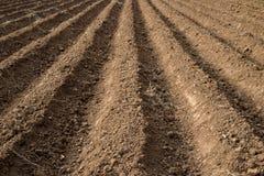 Il suolo scanala le terre dell'azienda agricola Immagine Stock