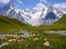 Il supporto Blanc da Val Ferret, montagne delle alpi, Italia Fotografia Stock Libera da Diritti