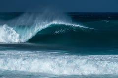 Il surfista guida l'onda immagine stock