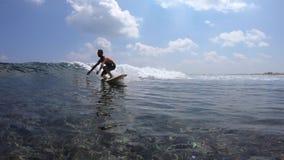 Il surfista guida l'onda di oceano cristallina stock footage