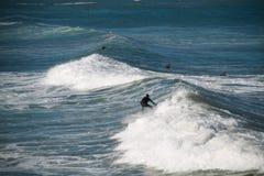 Il surfista guida un'onda Immagini Stock