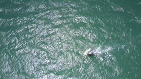 Il surfista lotta con le onde di oceano e del vento video d archivio