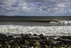 Il surfista pratica il surfing un'onda perfetta un giorno soleggiato Immagine Stock Libera da Diritti