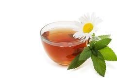 Il tè con una filiale della menta e una camomilla fioriscono Fotografia Stock