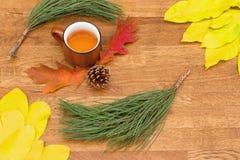 Il tè di autunno in tazza d'annata marrone sulla vecchia tavola di legno rustica con le foglie di autunno, la conca ed il pino si fotografia stock