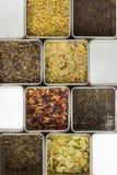 Il tè di erbe naturale della frutta in metallo stona, foto dell'alimento del primo piano Fotografie Stock Libere da Diritti