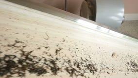 Il tè di qualità appena fatto di versamento del cameriere nella tazza di vetro, rottura per si rilassa la cerimonia stock footage