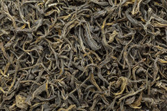 Il tè verde organico (camellia sinensis) ha asciugato le foglie lunghe Fotografia Stock Libera da Diritti