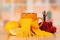 Il tè con anti-catarrale significa Immagine Stock Libera da Diritti