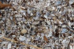 Il ` t di isn della spiaggia fatto della sabbia Immagine Stock