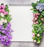 Il taccuino con il giardino fiorisce in vasi su fondo di pietra, vista superiore Fotografie Stock Libere da Diritti