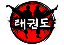 Il Taekwondo Immagini Stock