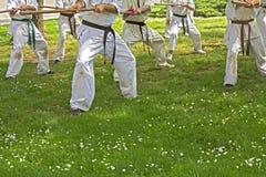 Il Taekwondo con i bastoni immagine stock libera da diritti