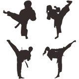 Il Taekwondo Shillouette Fotografia Stock