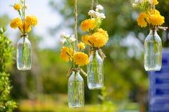 Il tagete fiorisce in un'attaccatura della bottiglia di vetro Fotografia Stock
