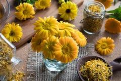 Il tagete fresco ed asciutto della calendula fiorisce su una tavola Fotografie Stock