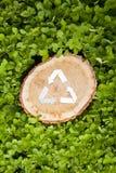 Il taglio di legno su erba e ricicla il simbolo Immagine Stock Libera da Diritti