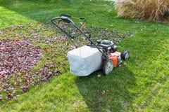 Il taglio e l'insaccamento erba e foglie nella caduta fotografie stock libere da diritti