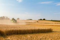 Il taglio moderno della mietitrebbiatrice due pota l'orzo del grano del cereale che lavora il campo dorato Immagini Stock Libere da Diritti