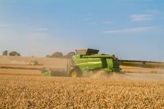 Il taglio moderno della mietitrebbiatrice due pota l'orzo del grano del cereale che lavora il campo dorato Immagine Stock