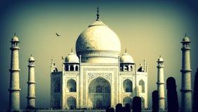 Il Taj Mahal Immagini Stock Libere da Diritti