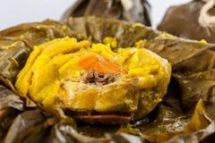 Il tamale colombiano tradizionale come fatto sulla regione di Tolima ha isolato la o fotografia stock libera da diritti