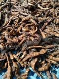 Il tamarindo secco Fotografia Stock