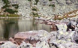 Il Tarn in alto Tatras, Slovacchia fotografie stock libere da diritti